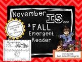 November IS- Emergent Reader