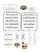 3rd Grade November Interactive Math Journal (Common Core Aligned)