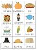 November Literacy Centers - Common Core Aligned