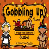 November Nouns: Irregular Plural Noun Match Freebie