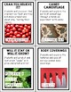 November Science Experiments & Activities