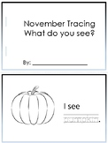 November Tracing - What do you see?