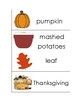 November/Thanksgiving Vocabulary Unit for Special Education