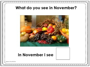 November, What Do You See? Matching and Sentence Completion Book for Vocabulary