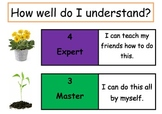 Novice to Expert Poster (Marzano Style)