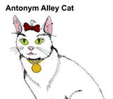 Nu School's Antonyms, Homonyms & Synonyms Video (2013)