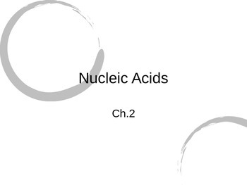 Nucleic Acid PowerPoint