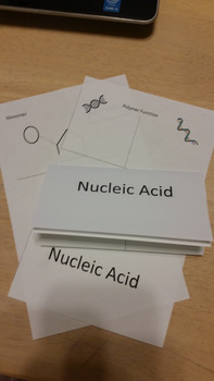 Nucleic Acid Tri-fold
