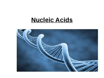 Nucleic Acids.