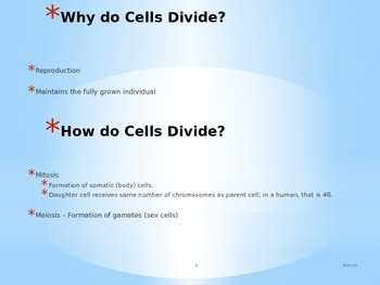Nucleic Acids, Principles of Cell Division, and Mitosis