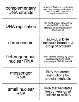 Nucleic Acids Vocabulary Flash Cards for Biological Chemistry