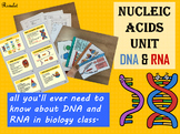 DNA & RNA unit, PowerPoint, flashcards and more - Full version