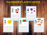Number 1-10 Flashcards, Numbers Printable for Kids, T-207