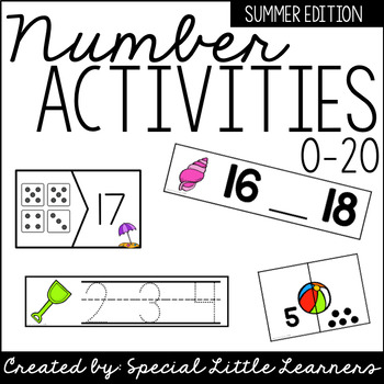Number Activities 0-20 {Summer Themed}