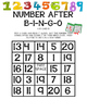 Number After Bingo- Partner Game- Differentiated 2 versions
