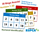 Number Bingo 1-20. Up to 30 players! Numeral Identification.