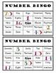 Number Bingo Fun!