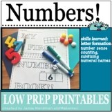 Learn my NUMBERS 1-10 Kindergarten