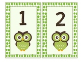 Number Cards 1-100 - Green Polka Dot - Owl theme