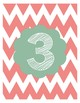 FREE Chevron Number Cards