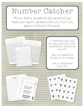 Number Catcher - A Fact Fluency Game
