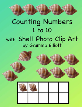 Number Clip Art with Shell Photos – 39 PNG clips – Domino – Ten Frames –  Lines