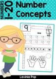 Number Concepts 1-20 Worksheets