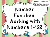 Number Families:  Working with Numbers 1-120