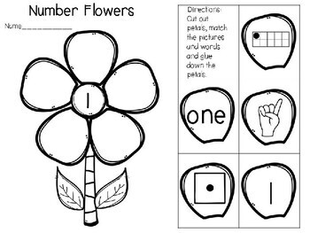Number Flowers- I Can Show Ways to Represent Numbers