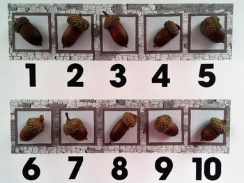 Number Frame Game with Bark Background