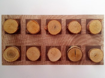 Number Frame Game with Tree Ring Background