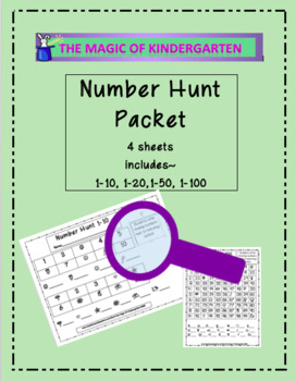 Number Hunt Packet