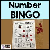 Basic Number Knowledge BINGO (Numbers 1-30)