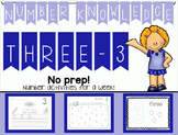 Number Knowledge: Number 3 (NO PREP!)