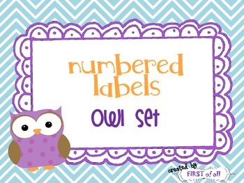 Number Labels Owl Theme