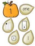 Number Matching Pumpkin and Seeds