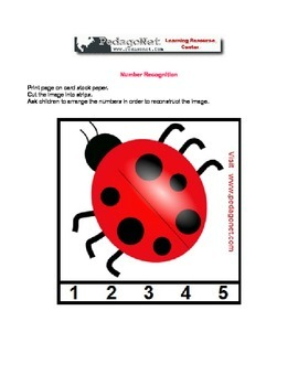 Number Order And Recognition