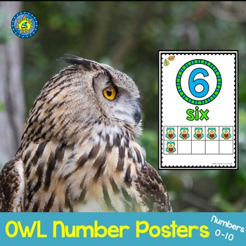 OWL Math Ten Frame Number Posters 0-10 ~ Kindergarten Common Core