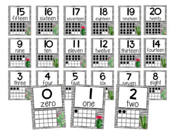 Number Posters - Cactus - Succulents - Classroom Decor