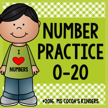 Number Practice Pages 0-20