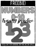 Number Practice Trace Inside the Lines - FREEBIE!