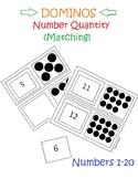 Number Quantity - Dominos  (Black & White)