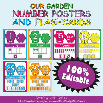 Number Recognition Poster & Flashcards in Flower & Bugs Theme - 100% Editble
