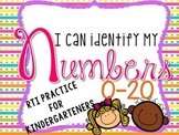 Number Recognition- RTI
