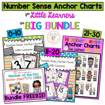 Number Sense Anchor Charts for Little Learners BUNDLE (1-20)