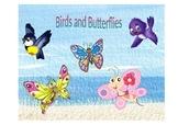 Number Sense-Birds and Butterflies