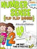 Number Sense Flip Flap® Biggies 20-100