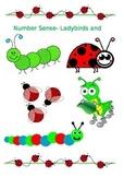Number Sense-Ladybirds and Caterpillars