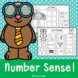 Number Sense Activities: Number Sense to 20