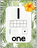 Number Sense Posters 1-20 Tropical Flamingo Theme